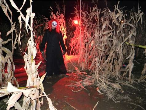 17 Best Ideas About Scary by 17 Best Ideas About Maze On Spooky