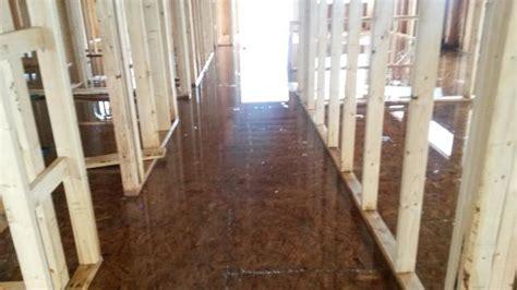 Finished Osb Flooring Flooring Ideas And Inspiration