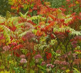 What To Grow In Fall Garden - 10 striking fall colors plants to grow in your landscape