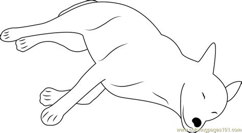 sleeping puppies coloring pages canaan dog sleeping coloring page free dog coloring