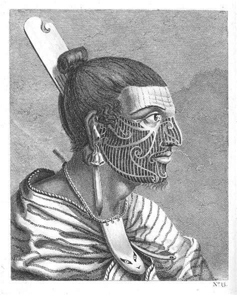 the head of a new zealander by sydney parkinson