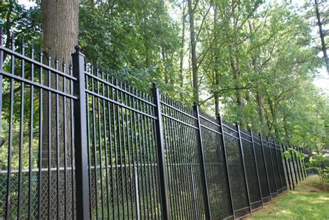Decorative Iron Railing Panels by Ornamental Fencing Panels Halflifetr Info