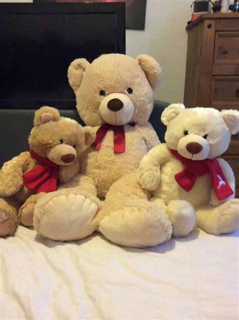 teddy bears for sale large teddy for sale in uk view 97 bargains