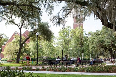 Uf Mba Right After Undergrad by Of Florida Photos Us News Best Colleges