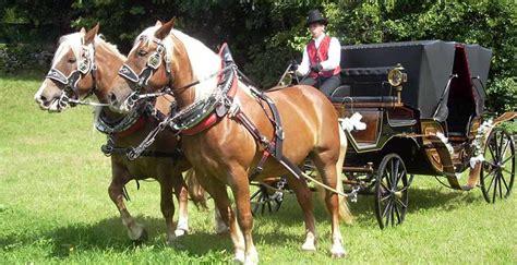 carrozza con cavalli agriturismo maso grisun vacanze in val rendena