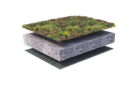 Beton Lavé Prix M2 3473 by Sedum Cover For Draining Soil 0 10 176 Sempergreen