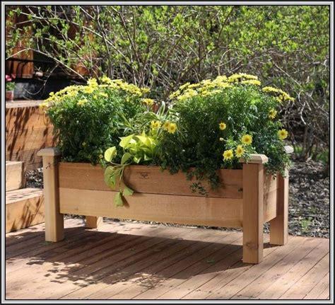 Blumenkasten Selber Bauen by Balkon Blumenkasten Holz Selber Bauen Balkon House Und