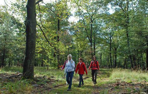 wandlen länglich otterlose herfstwandeling park hoge veluwe