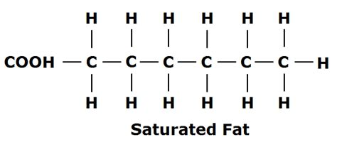 healthy fats chemistry image gallery saturated structure