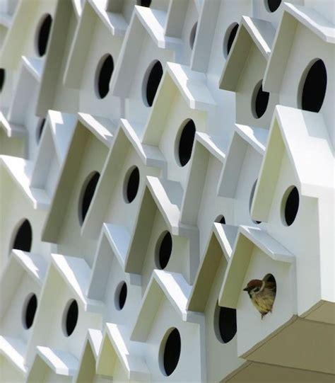 uccelli da appartamento appartamenti per uccelli