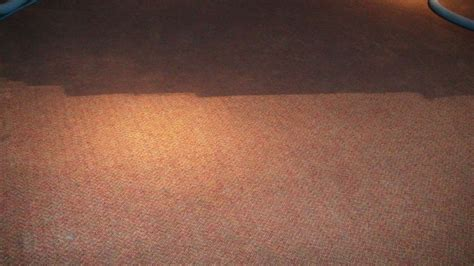 speedy rug cleaning carpet cleaning restoration commercial residential if it s we ll clean it