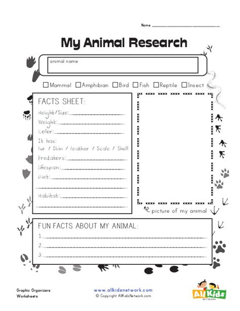 free printable animal report animal research graphic organizer all kids network