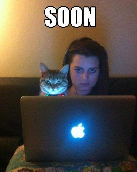 Cat Soon Meme - nothing scarier than a crazy woman and her cat the guy