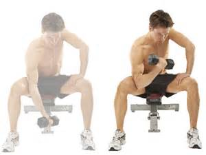 Gallery images and information dumbbells workout for arms