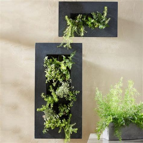 1000 Ideas About Metal Wall Planters On Pinterest Metal Metal Wall Planter