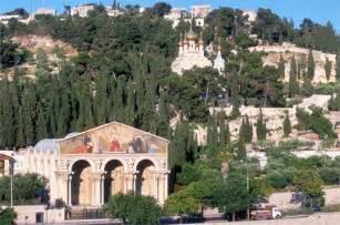 giardino dei getsemani gerusalemme perch 233 la risoluzione unesco non va