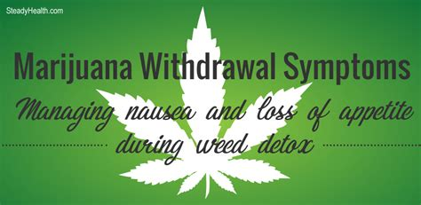 Cannabis Detox Symptoms by Marijuana Withdrawal Symptoms Managing Nausea And Loss Of