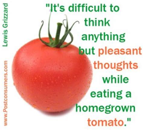Tomato Meme - tomato quotes quotesgram