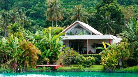 Detox Resort Phuket Thailand by The Lifeco Phuket Accommodations Photos Reviews Vegan