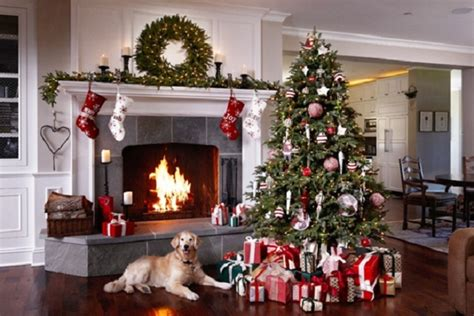 this is how to make your christmas tree dog friendly urdogs
