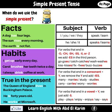 simple present tense simple present tense driverlayer search engine