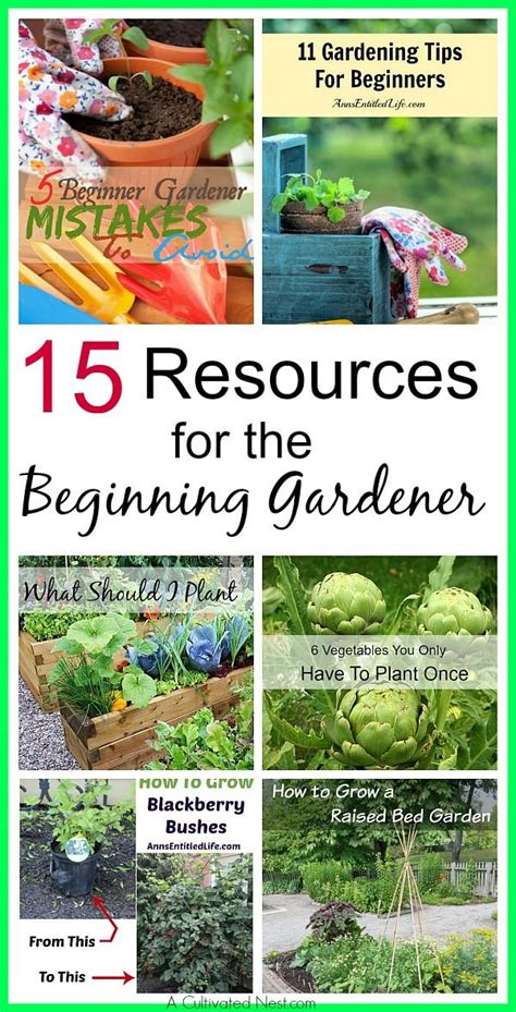 Planning A Vegetable Garden From Scratch How To Start A Vegetable Garden From Scratch Backyard 59