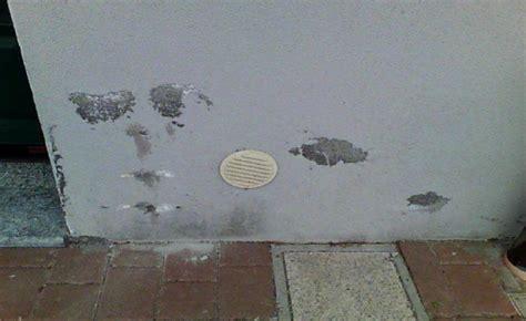 muffa muri interni muffa in casa umidit 224 di risalita