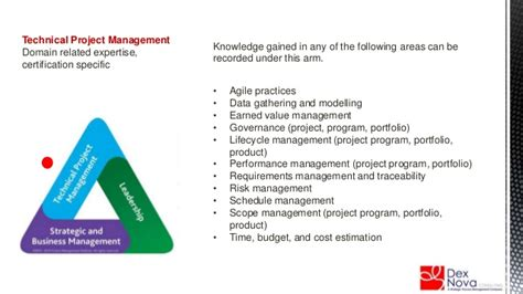 stern portfolio n64 explaining the pmi talent triangle