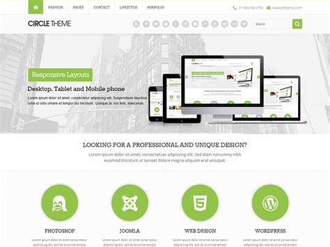 kopatheme layout manager circle lite wordpress theme demo information and analytics