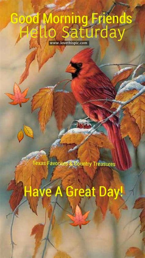 good morning friends  saturday pictures