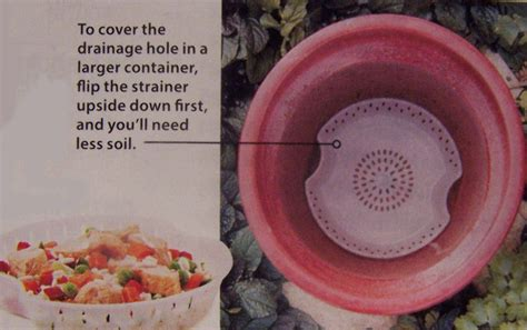 Planters Without Drainage Holes by Drainage Covers Microwave Containers Make Great Ones