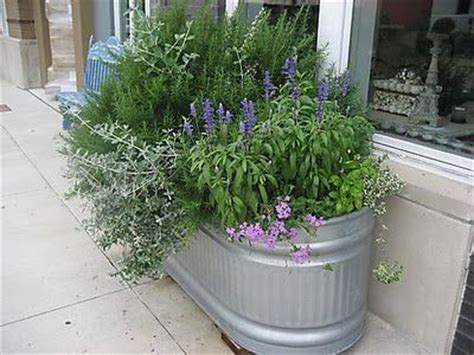 water trough planter 17 best ideas about galvanized stock tank on pallet cooler stock tank and