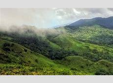 Karnataka's endangered Kappatagudda Hills may get back ... Hunger Strike
