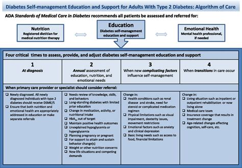 idahos mental health system and the ada integration diabetes self management education and support in type 2