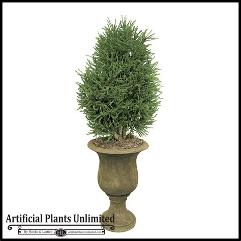topiary trees indoor 3 lycopodium shrub topiary indoor