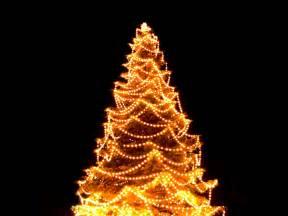christmas light tree christmas decorating