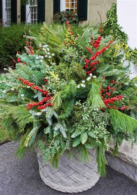 outdoor winter planter ideas tips for winter pots enchanted gardens