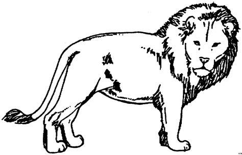 loewe 4 ausmalbild amp malvorlage tiere