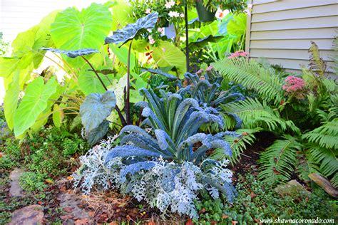 Tropical Garden Flowers How To Grow A Tropical Jungle Garden Coronado
