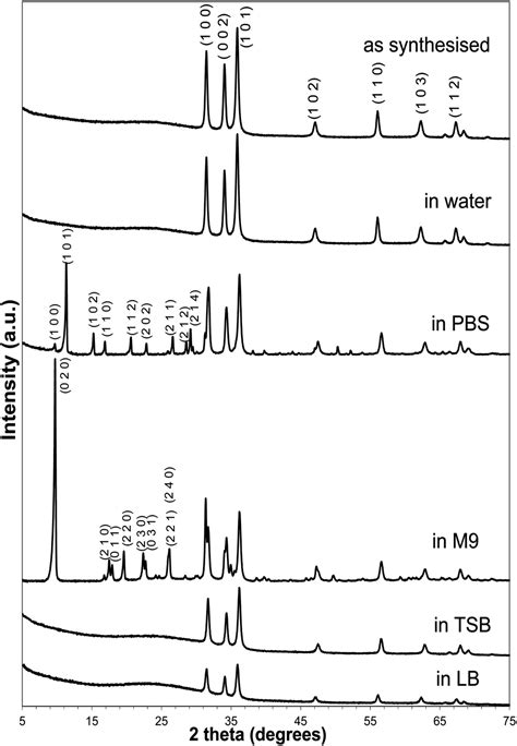 xrd pattern of pbs the effect of common bacterial growth media on zinc oxide