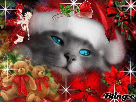 imagenes navidad gatitos lindo gatito navide 241 o 161 161 fotograf 237 a 101814100 blingee com