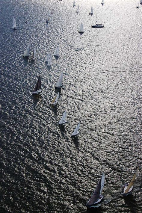 boats birds picture this boats birds and harbors boats