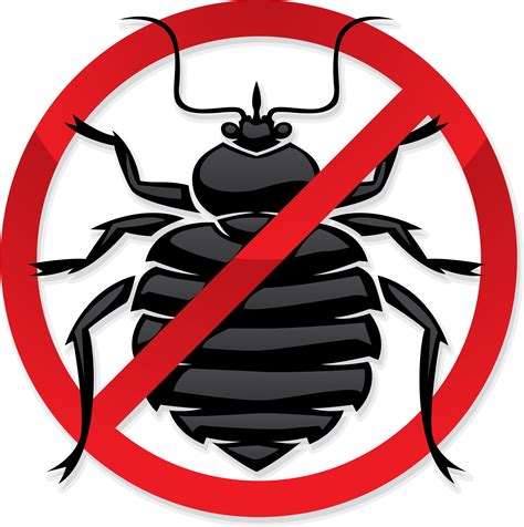 exterminating bed bugs all out bed bug exterminator manhattan bed bug removal