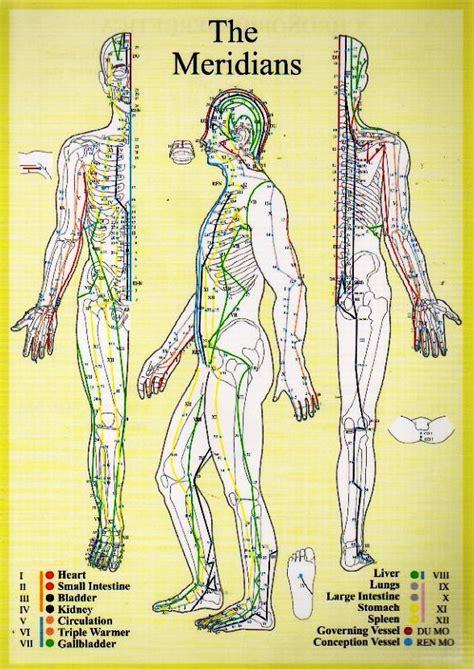 medicine meridians diagram medicine meridians diagram 28 images meridian system