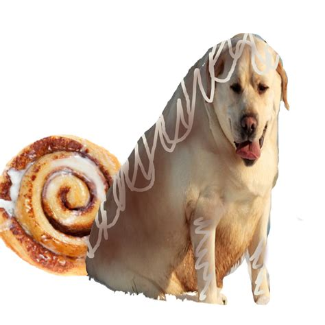dogs with rolls of with cinnamon roll by cutebudgies on deviantart