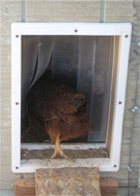 Chicken Door by Backyard Chicken Chicken Coops Doors Keep Chicken Doors