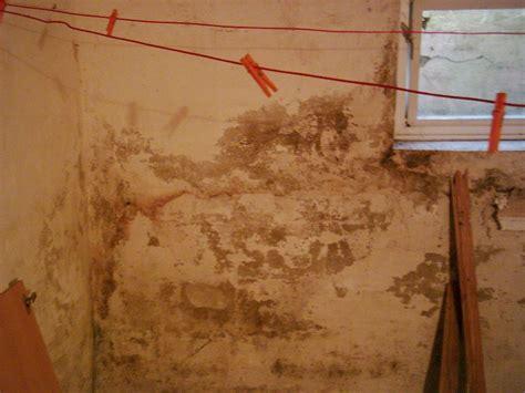 sauna im keller feuchtigkeit mauerfeuchte baubiologe ber 228 t feuchte w 228 nde feuchter