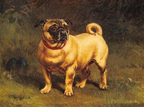 pugs in paintings pug culture