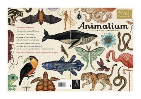 animalium postcards welcome to welcome to the museum books by wormell toppsta