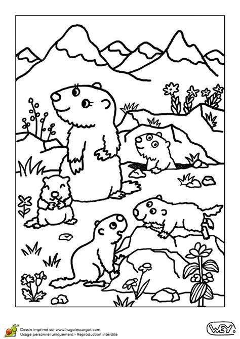 45 Dessins De Coloriage Marmotte 224 Imprimer